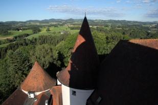 Schlossmalerin_12_Isabella S. Minichmair